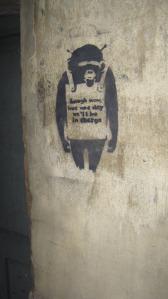 Street Art Ape -  Photo by Juliamaud