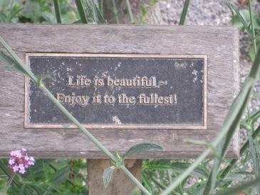 www.scavengerhunts.london - treasure found in kennington flower garden