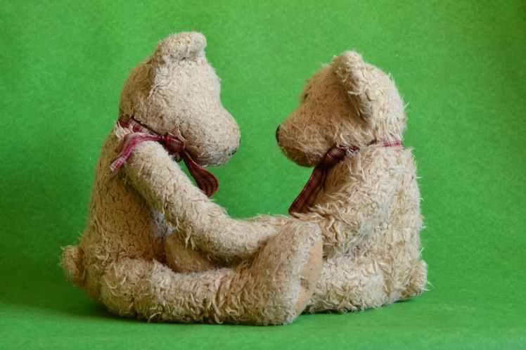 cute teddy teddy bears toys